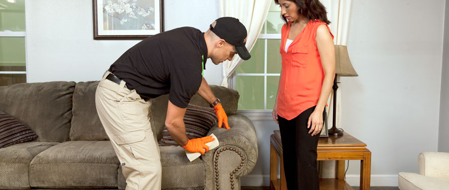 Dundalk, MD carpet upholstery cleaning